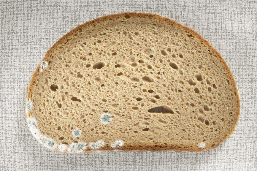Brot mit Schimmel