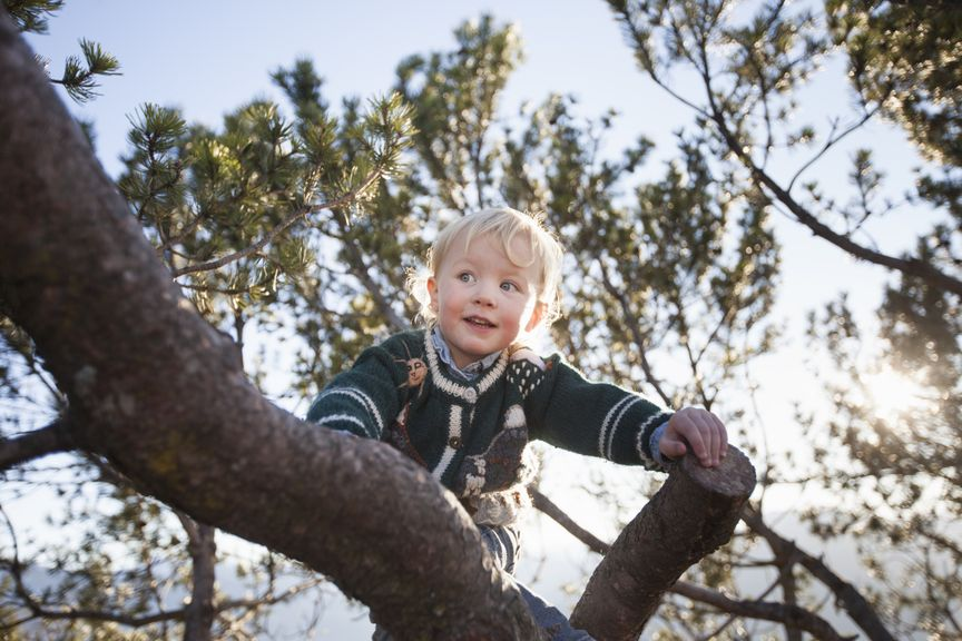 Kind klettert auf den Baum