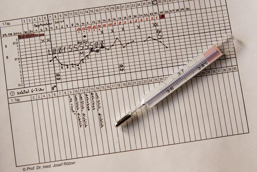 Thermometer mit Fruchtbarkeitskurve