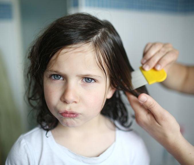Mädchen werden wegen Läusen die Haare gekämmt