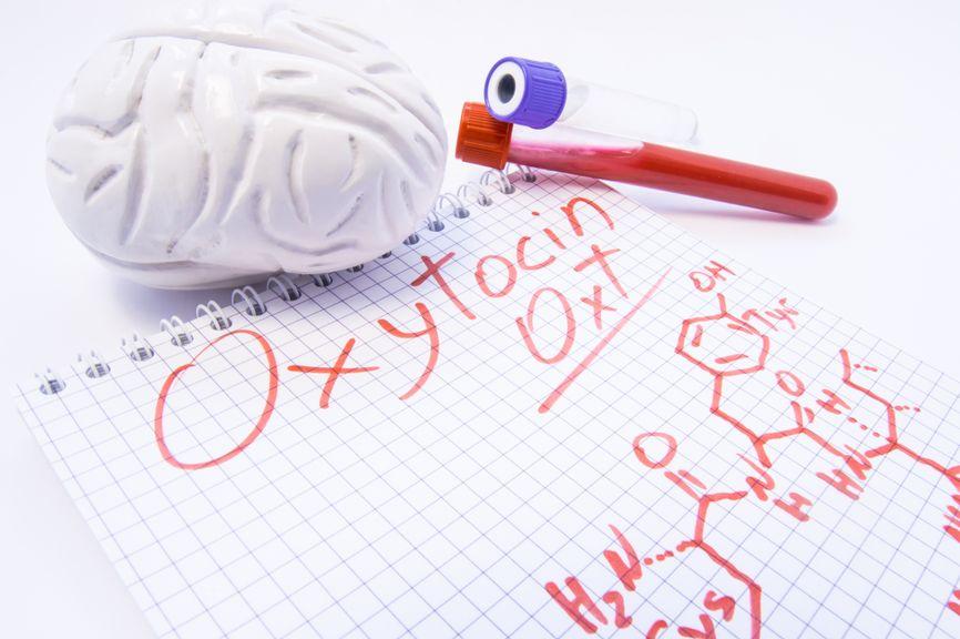 Model vom Gehirn, Formel von Oxytocin und Reagenzglas