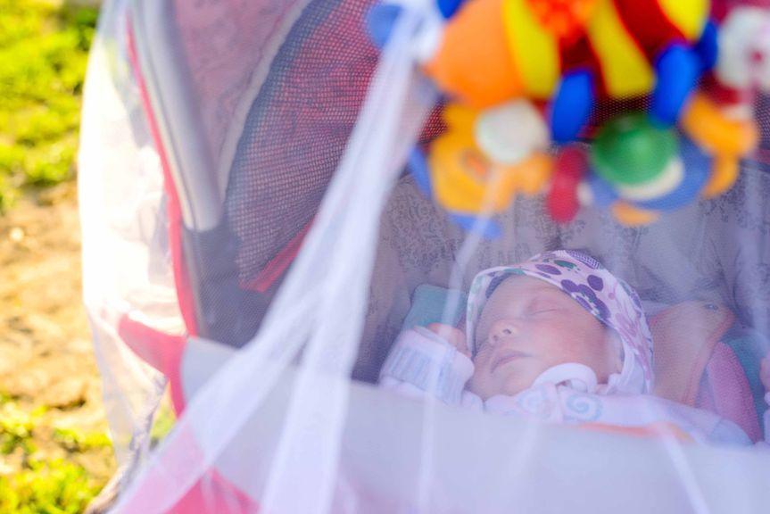 Baby schläft im Kinderwagen mit Moskitonetz