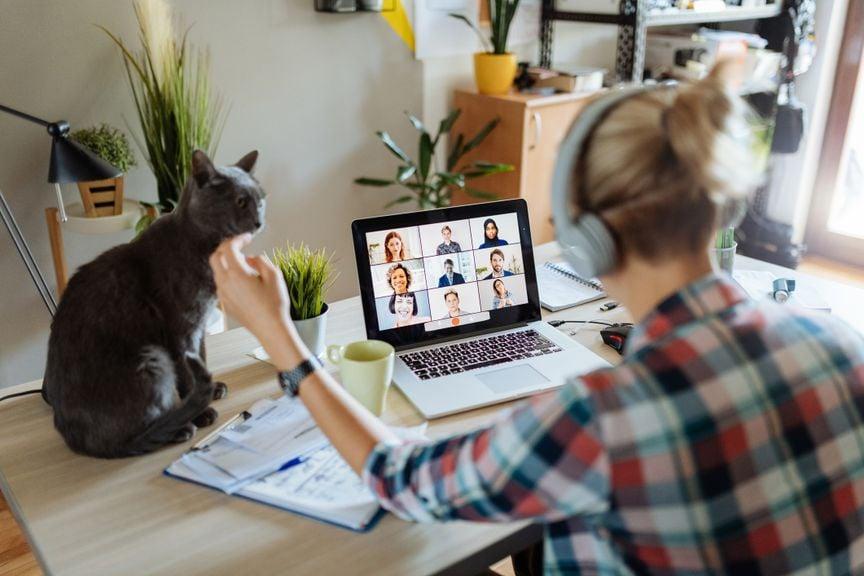 Frau mit Katze im Home Office