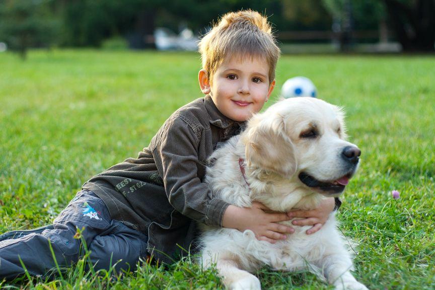 Kind mit Hund auf der Wiese