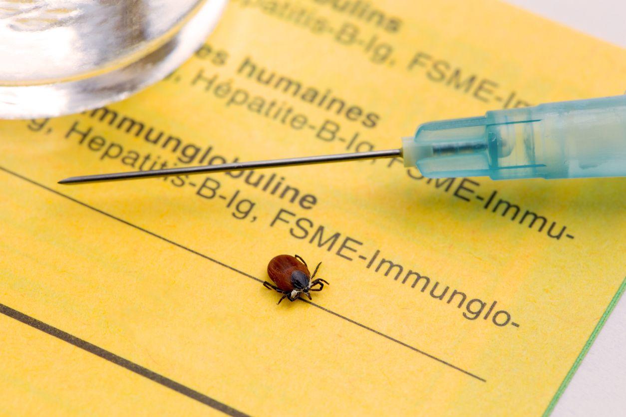 Spritze mit Impfung und Zecke
