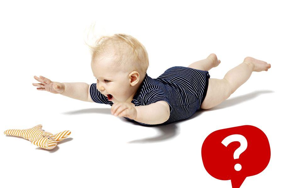 Quiz die Sinne eines Babys mit Icon