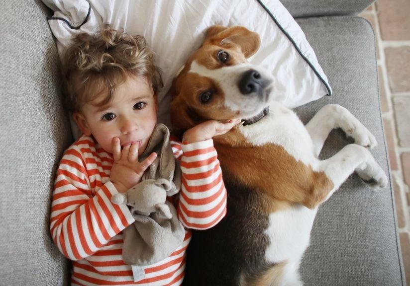 Kind mit Hund auf dem Sofa