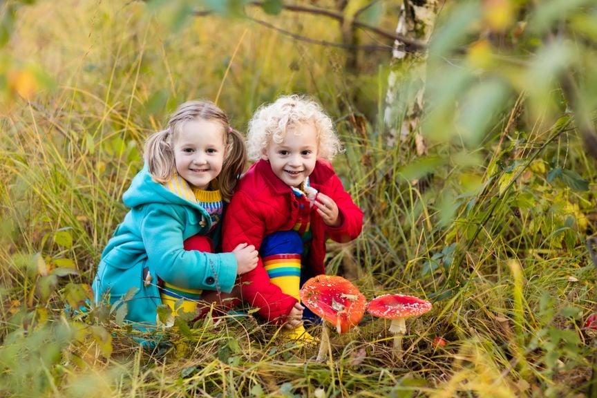 Kinder mit Fliegenpilzen